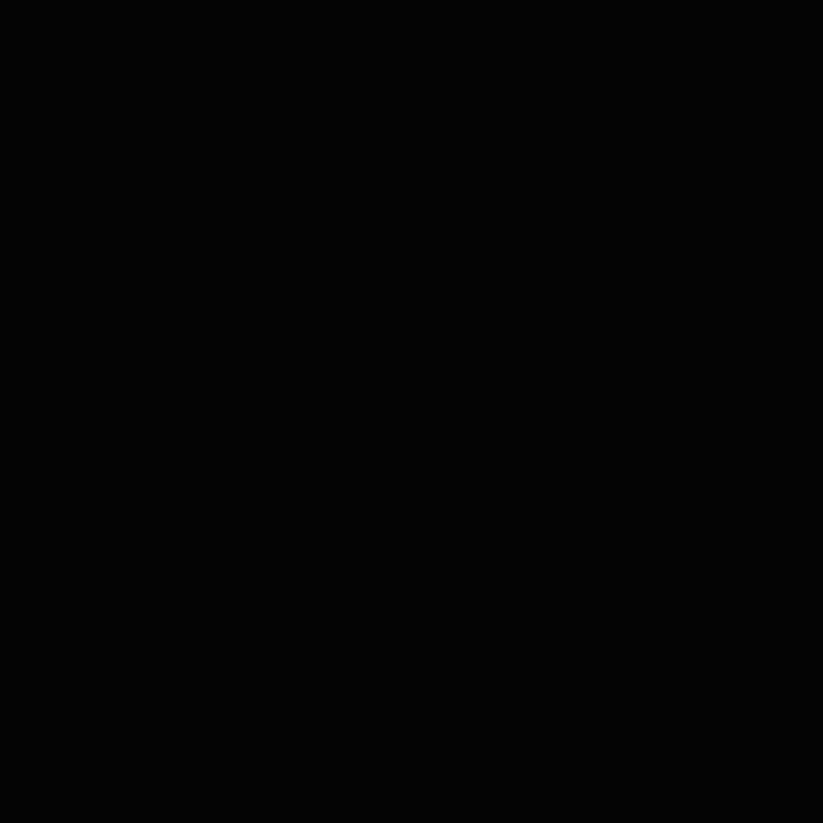 fond noir.jpg