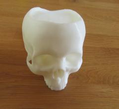 Crâne viking