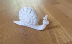 snail01.jpg