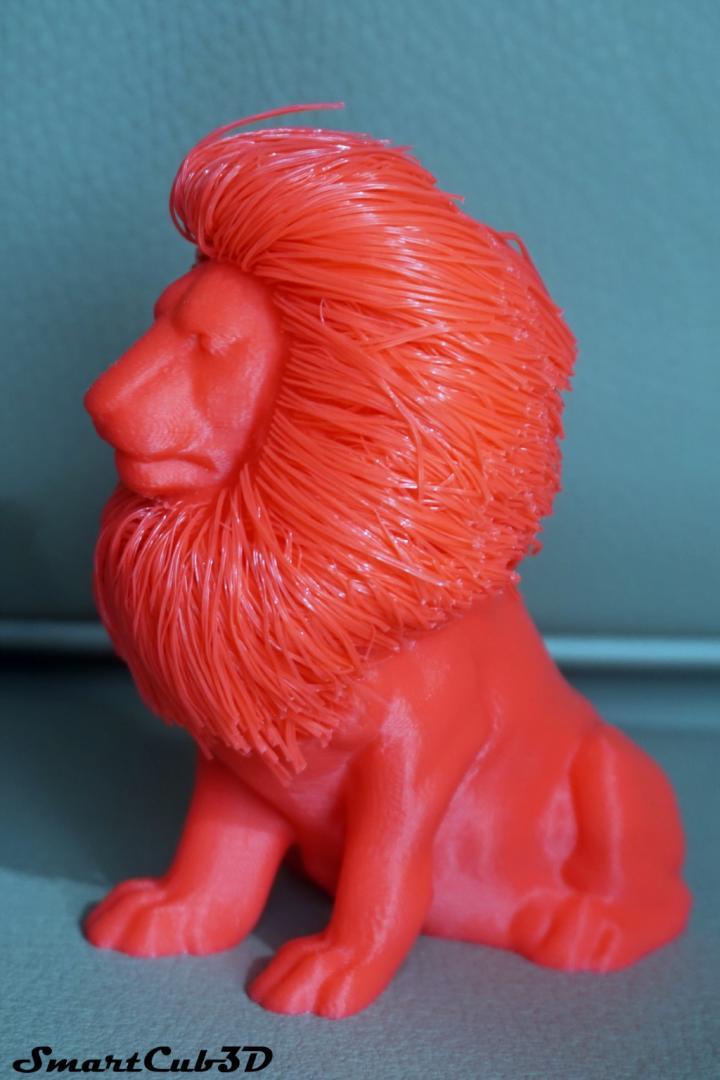 Lion Fringant