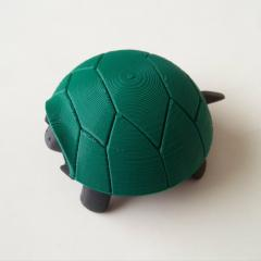 Squishy Turtle