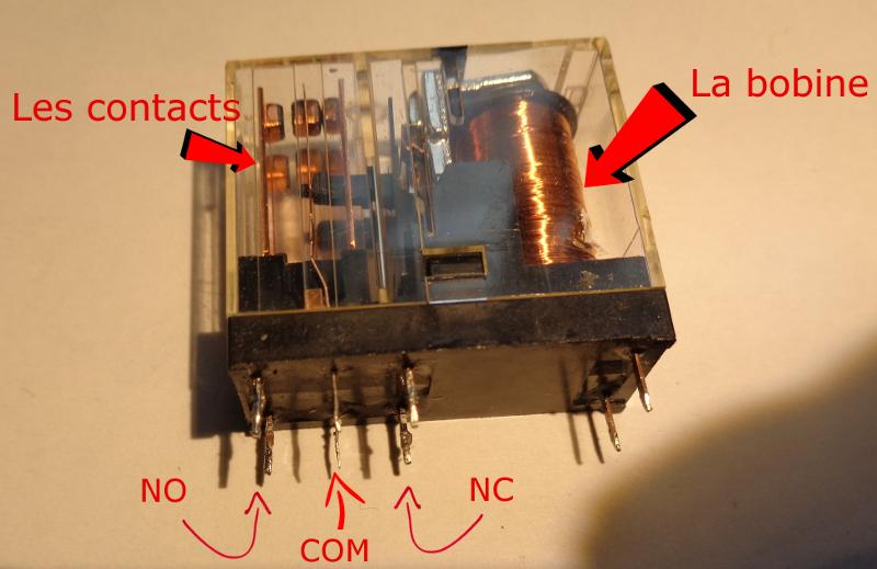 relay1.JPG.b7d0023c1487f0a29d8f3bd620bd7c6c.JPG