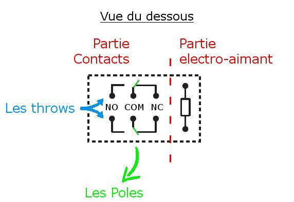 relayBottom.JPG.1027e4a303146c97e46cecb0325ce6c0.JPG