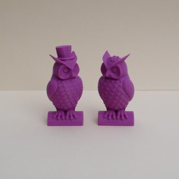 Owl_couple