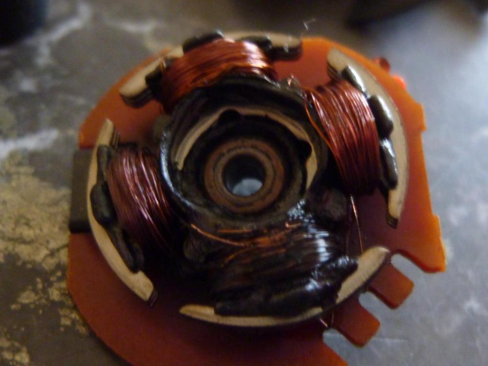 P1150063.JPG
