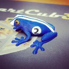 Grenouille Racer