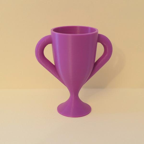 Trophy_Cup.jpg.5a525377bc44961c5e9bddc37abbd486.jpg