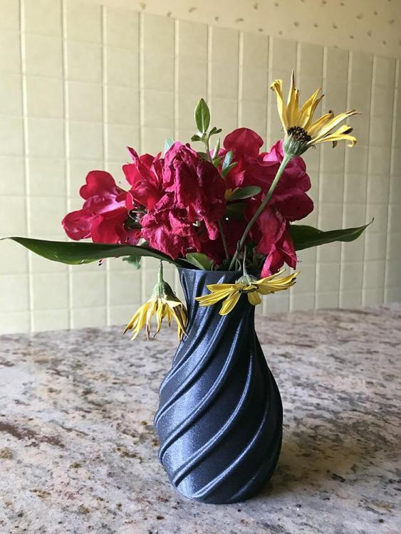 Vase.thumb.jpg.fb3ed7362f94427b841897f706daf66a.jpg