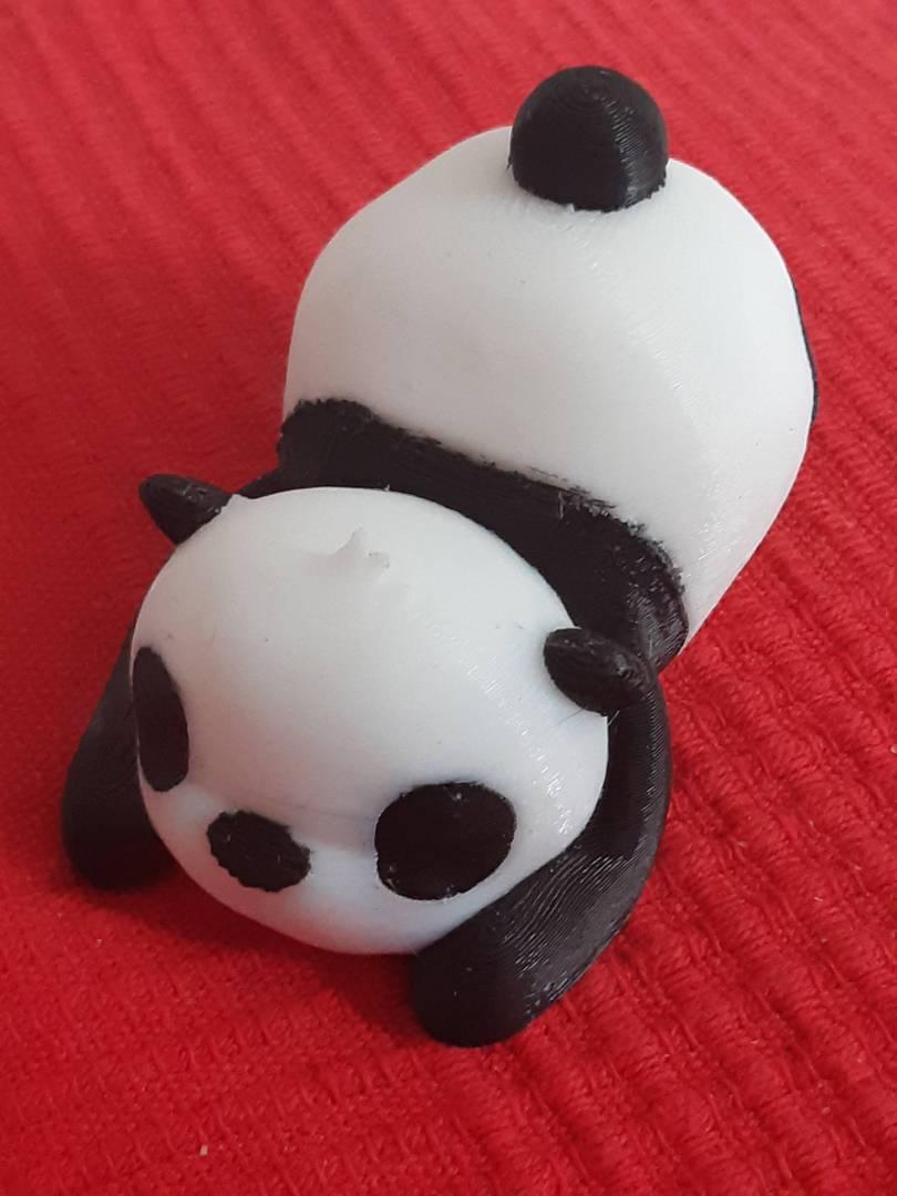 bébé Panda.jpg