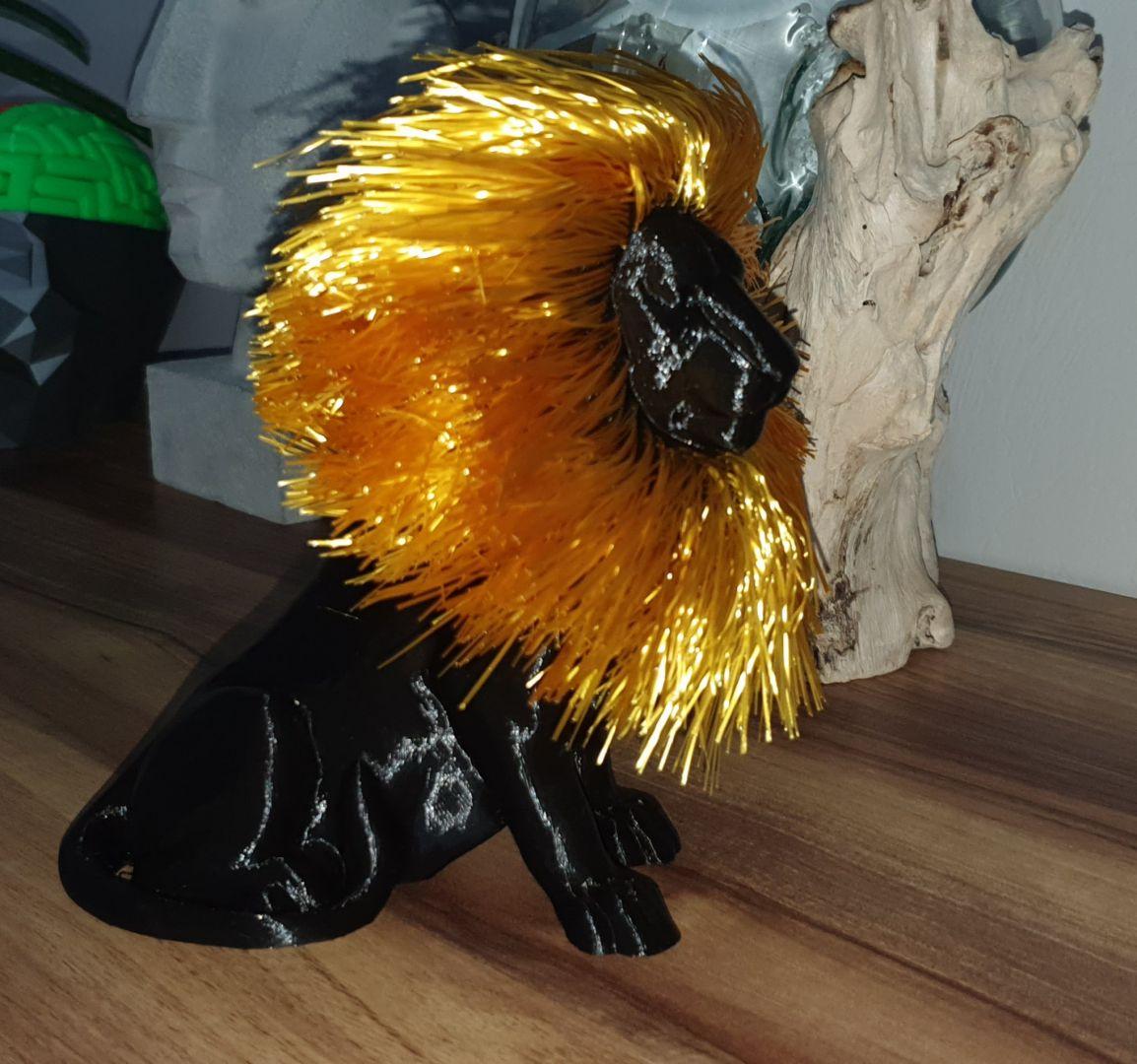 Lion avec crinière