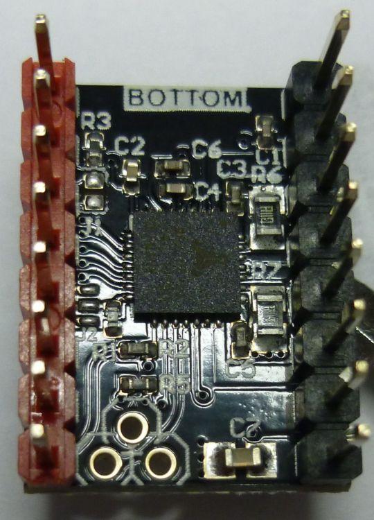 Bottom.JPG