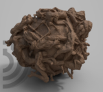 btrd3d scan sculpture numérisation 3d rendu.png