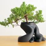 Pot de fleur pour bonsai