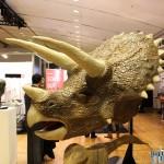 3D-Printshow-15-novembre-2013-037