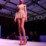 3D-Printshow-16-novembre-2013-74