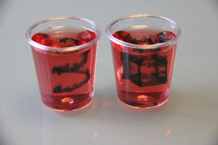 3D Printed Jello Shot