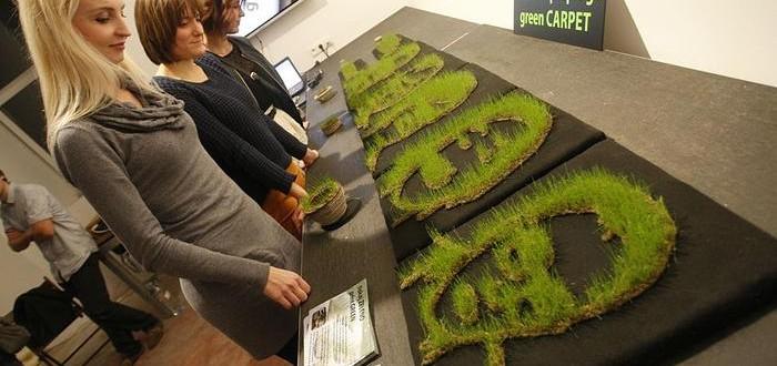 impression 3D herbe jardin
