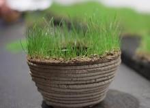 Pot d'herbe imprimé en 3D