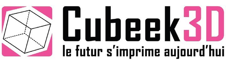 logo cubeek3D