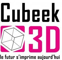 Cubeek3D futur