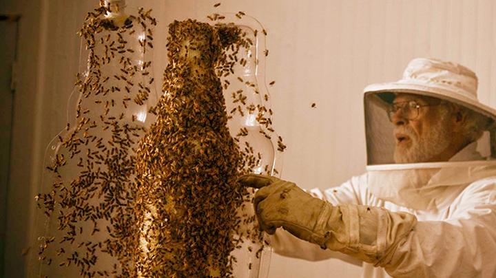 3-Bee-printer