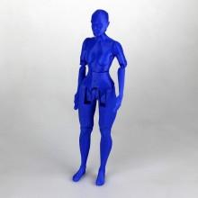 Figurine articulée personnalisable