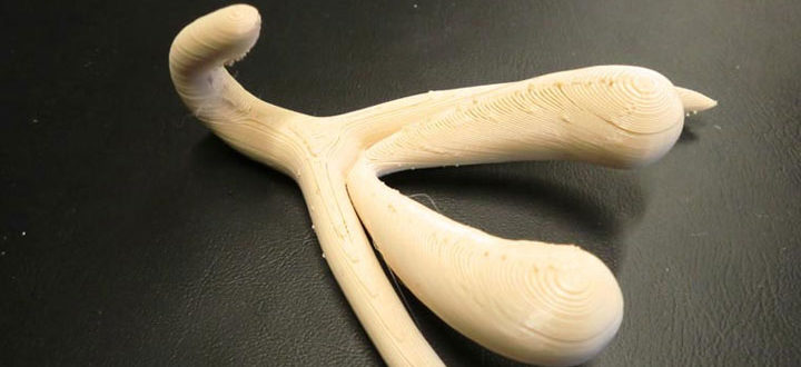 clitoris imprimé en 3D cours éducation sexuelle France