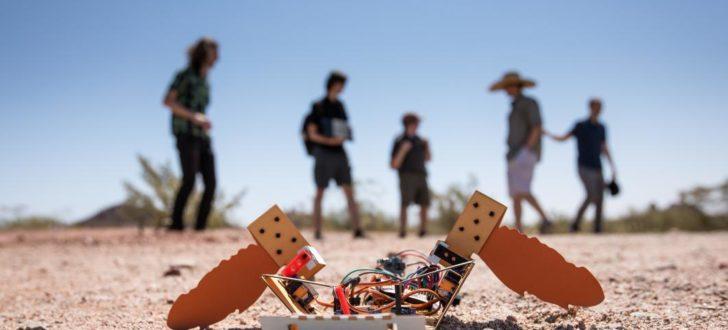 robot c-turtle mars