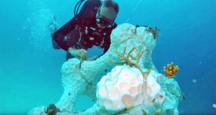 recif corail imprimé en 3d