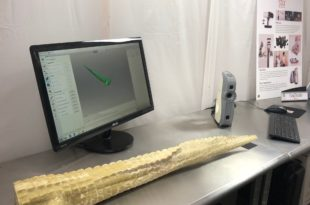 queue alligator imprimée en 3D
