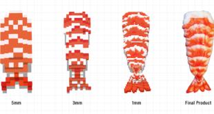sushi imprimé en 3D