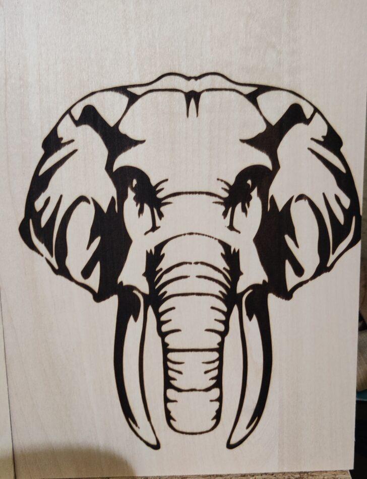 gravure éléphant